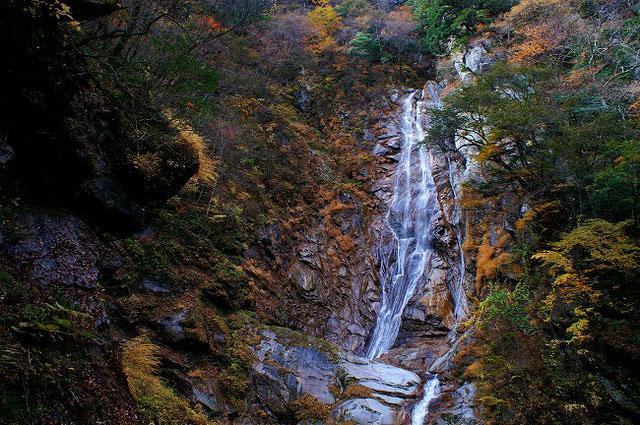 篠沢大滝キャンプ場7