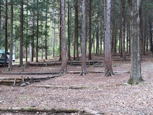 ウッドペッカーキャンプ場