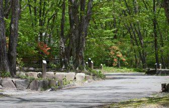 榛名湖オートキャンプ場40